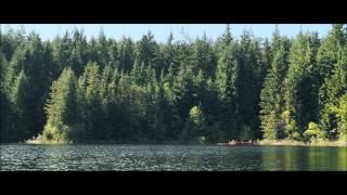 Quella casa nel bosco - Trailer Italiano Ufficiale HD