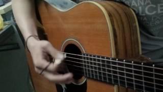 pick guitar bằng gỗ