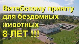 Витебскому Приюту для бездомных животных - 8 лет!