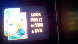 Opening To Bear In The Big Blue House Live Vhs By Donna Gandolfo
