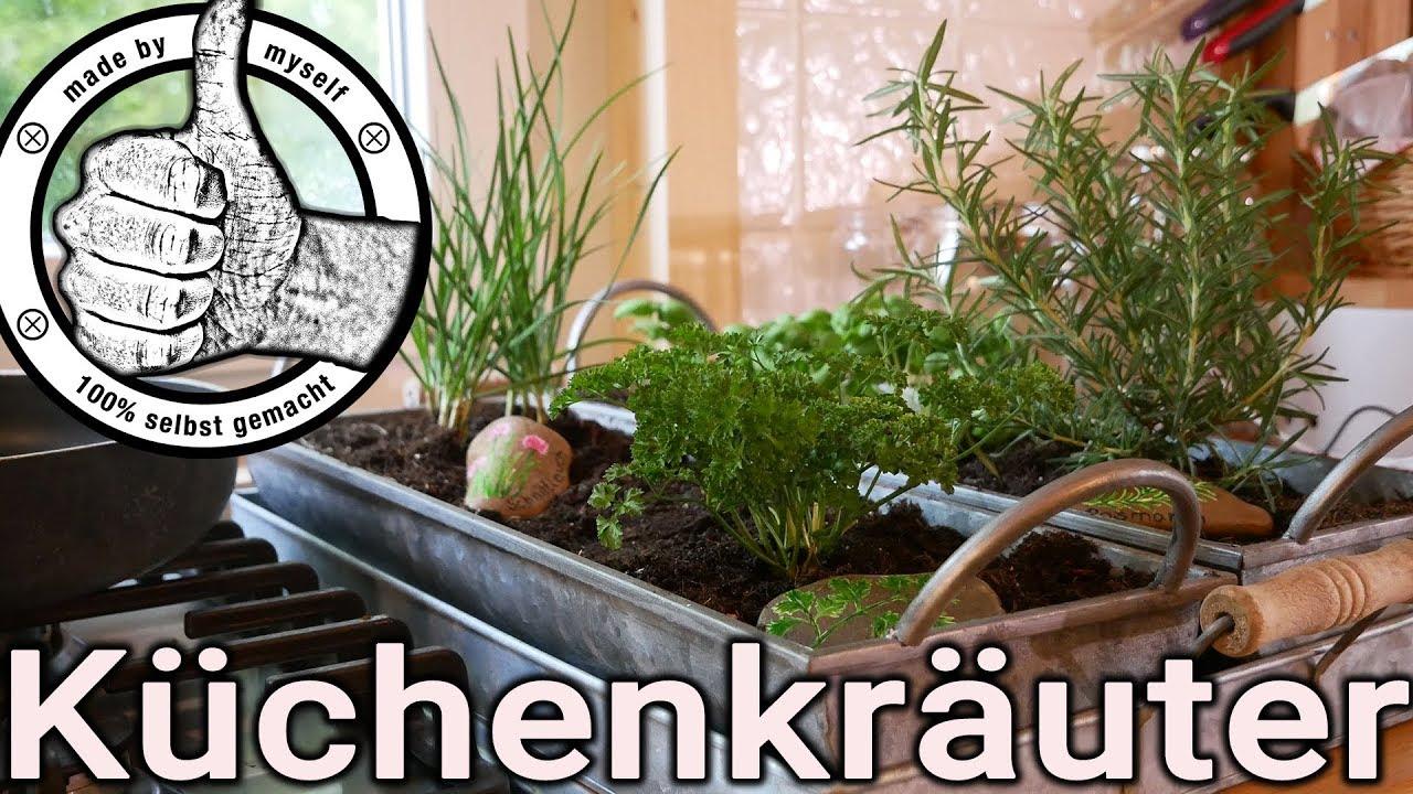 Kräutergarten selber machen, Küchenkräuter richtig pflegen ...