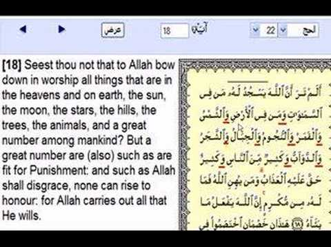 who live on the sun and moon stars worship allah