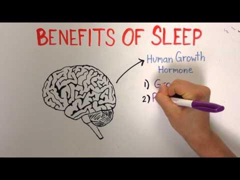 Sleep 1: Importance and Benefits of Sleep