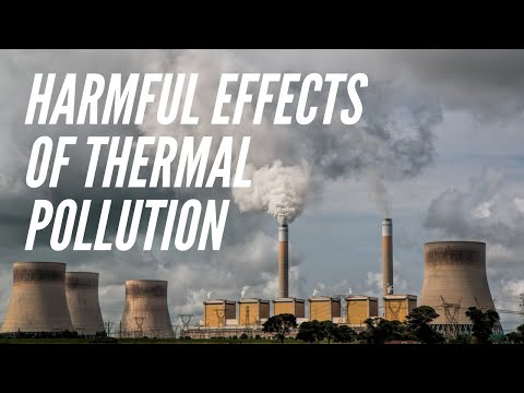 Harmful Effects Of Thermal Pollution