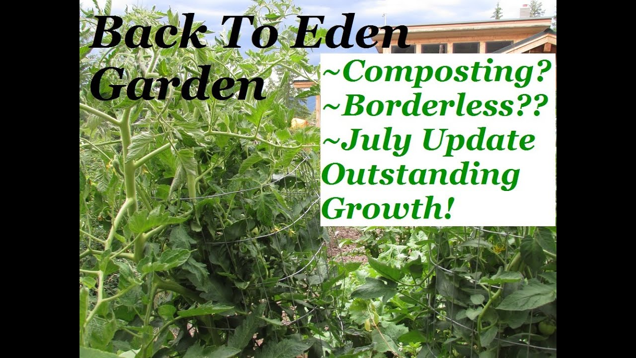 How to grow vegetables in raised bed gardens? Back To Eden Truths ...