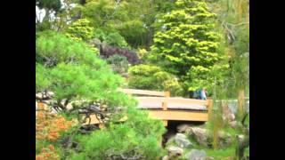 San Francisco California Japanilainen puutarha. www.viihde.foorumi.eu