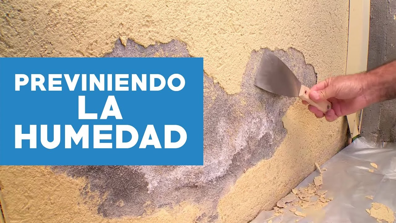 Como sacar manchas de humedad en la pared amazing - Humedad en pared ...
