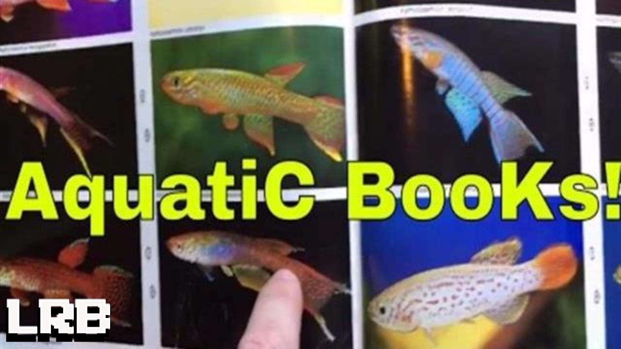 Freshwater aquarium fish library - Take A Look It S In A Book It S My Aquatic Library