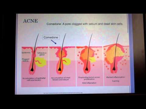 Dermatology part 1