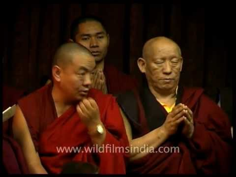 Monks of Palpung Sherabling monastery praying for peace and liberation