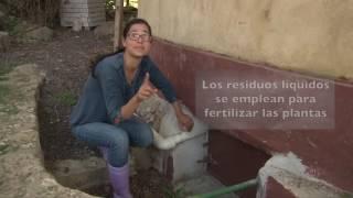 Veracruz Agropecuario - Baño Ecológico Sin Agua