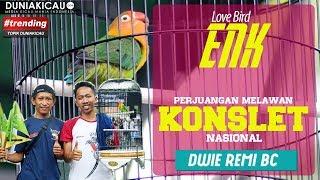 ENK Sejajar Dengan Love Bird KONSLET Nasional : PIALA VERA NURLAELA JAMAN