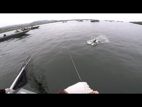 Salmon Fishing In Gold Beach Oregon