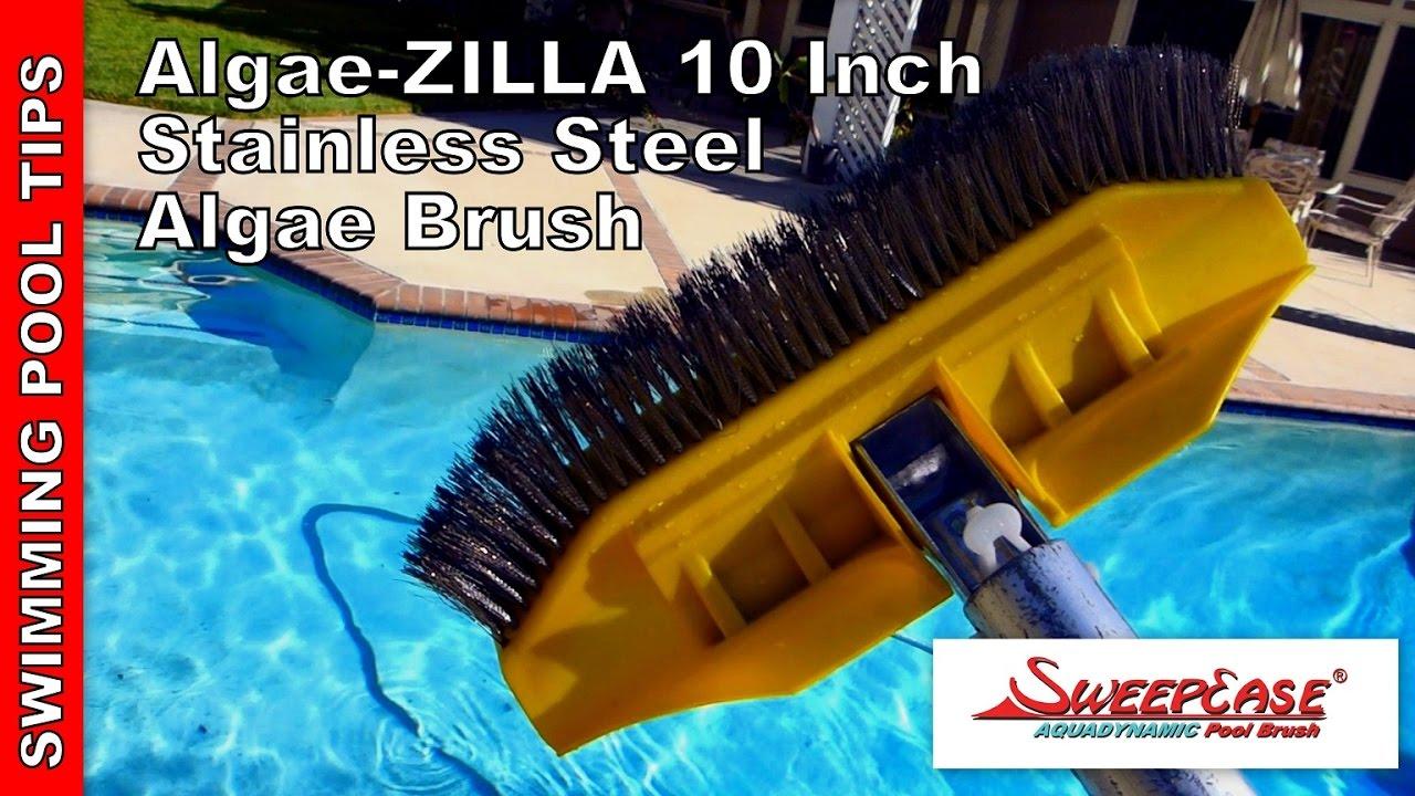 Algae Zilla 10 Stainless Steel Algae Brush By Sweepease Youtube