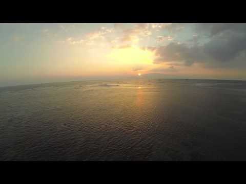 SharkPit Lahaina, Hawaii - Turtles - Drone DJI Phantom 2