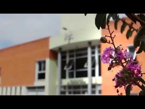 IAC -  Instituto Asistencial Colectivo streaming vf