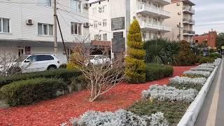 Красота зимних улиц в Лазаревском, Сочи 22 декабря 2019.