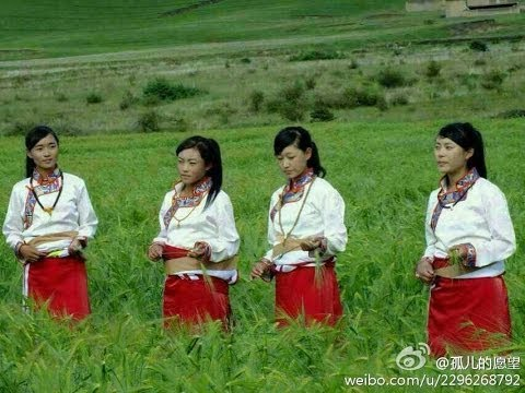 Tibetan song 2013 - Orphan's dream II [ full album ]