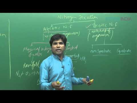 Mineral Nutrition by M. Asad Qureshi (MAQ) Sir (ETOOSINDIA.COM)