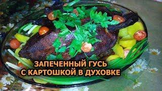 Запеченный Гусь в духовке с картошкой и яблоками✓