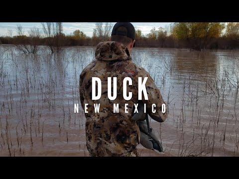 Rio Grande Duck Hunt - New Mexico