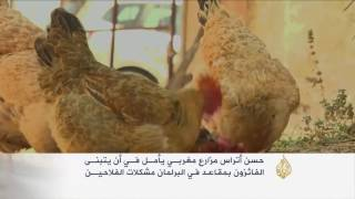 أتراس.. مزارع مغربي يحلم ببرلمان يدعم الفلاحين