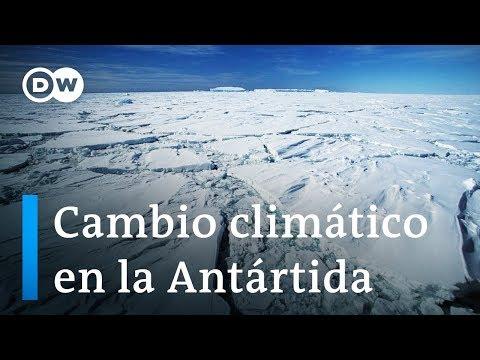 Calentamiento global en la Antártida