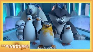 Les Pingouins de Madagascar - Featurette 2 Styles, 1 Mission [Officielle] VOST HD