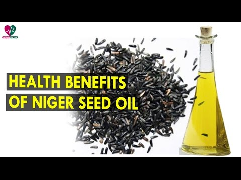 Health Benefits Of Niger Seed Oil || Health Sutra - Best Health Tips