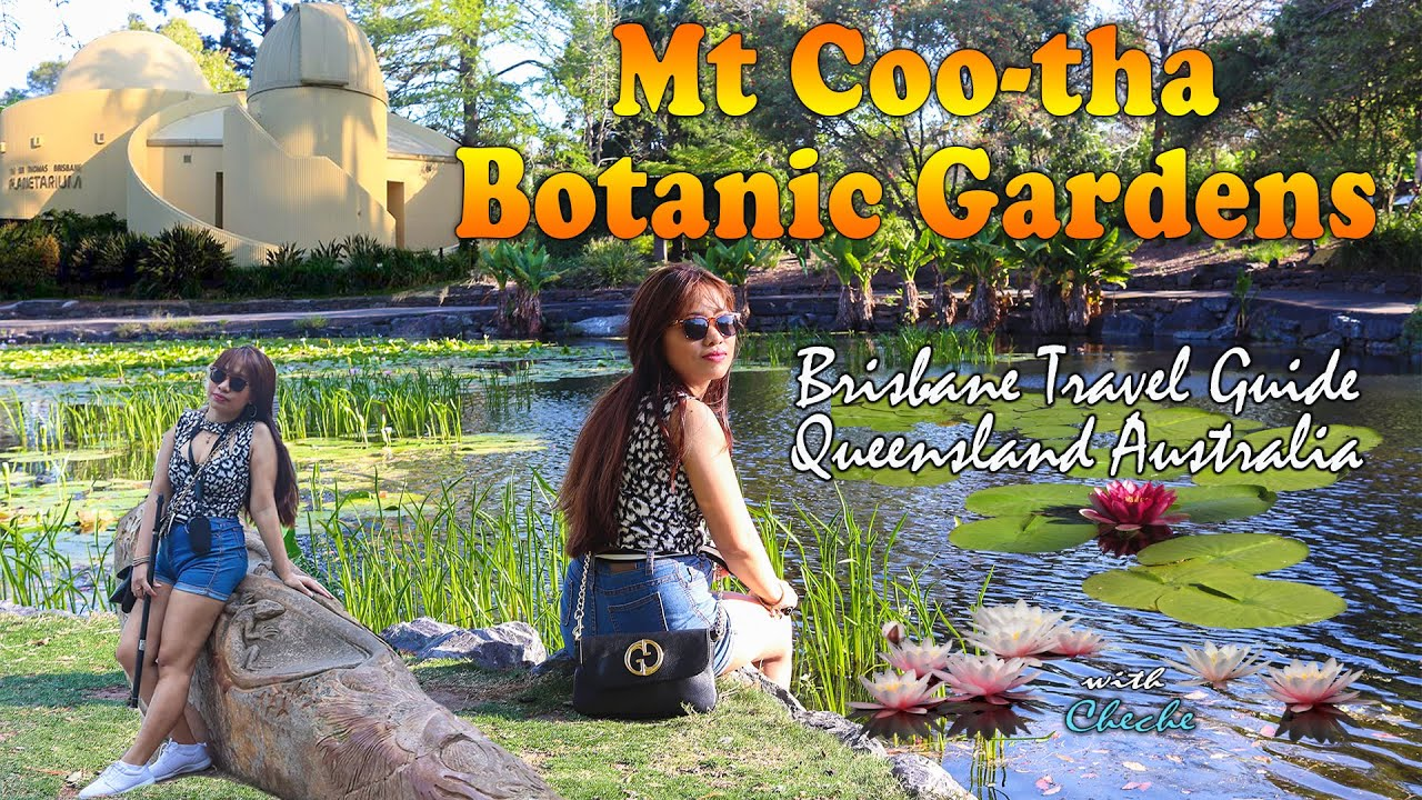 Mt Cootha Botanic Gardens BNE l Brisbane Australia
