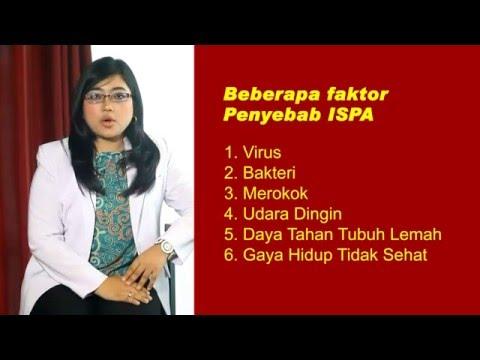 Tips Sehat Dokter 24 : ISPA Pada Orang Dewasa