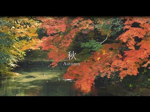 Guide Of Okayama Korakuen05 <Four Seasons>