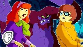 Scooby-Doo! en Français | Il faut se méfier El Chupacabra | WB Kids
