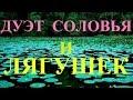 Сказочный Соловей и Хор Лягушек Live Nightingale Frogs Singing mp3