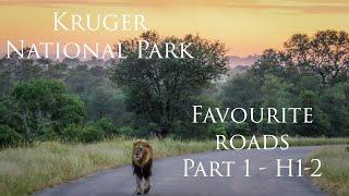 Kruger Park, Favourite Roads Part 1 - H1-2
