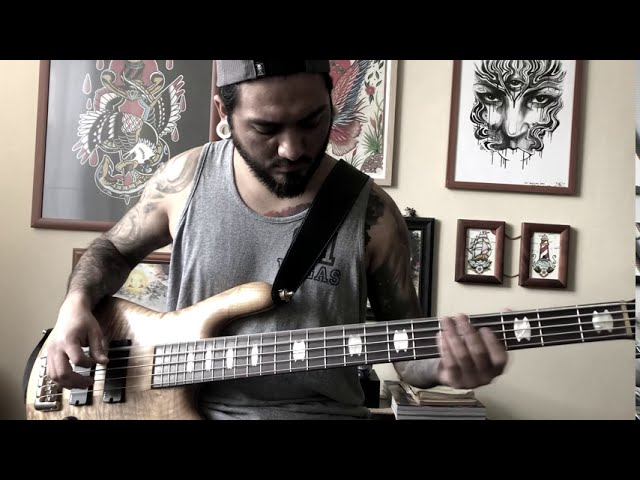 Octophant - Conditioned Lives (Bass Playthrough)