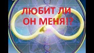 """ОНЛАЙН-РАСКЛАД """"ЛЮБИТ ЛИ ОН МЕНЯ?!"""""""