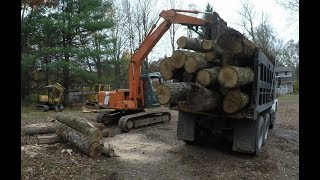 Moving logs and splitting fire wood