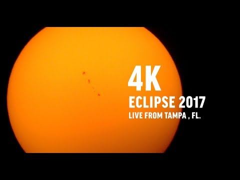 4K Eclipse 2017 Stream - 4 hours - Live from Tampa FL - 81% Occlusion