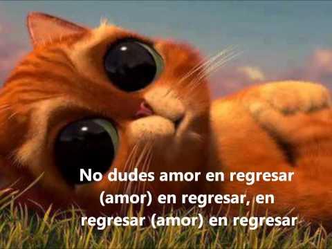 Daniel Soto ► Aunque Pierda La Razón - (Letra e imagenes) reggaeton romantico
