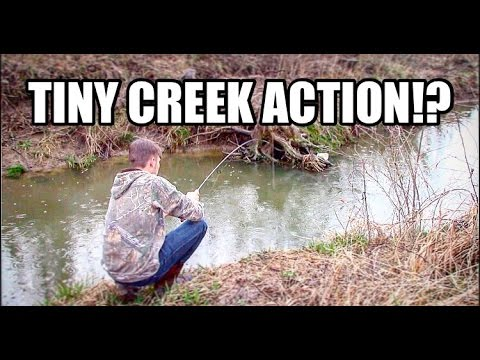 Fishing in SMALL CREEK!? || SO MUCH FUN!