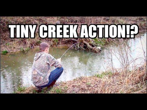 Fishing in SMALL CREEK!? || SO MUCH FUN!