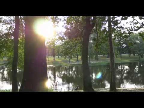 Texarkana's City Parks