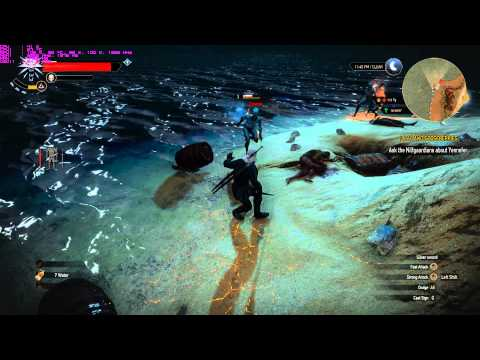 The Witcher 3 : Wild Hunt - i3 4170 - GTX 960 - Custom