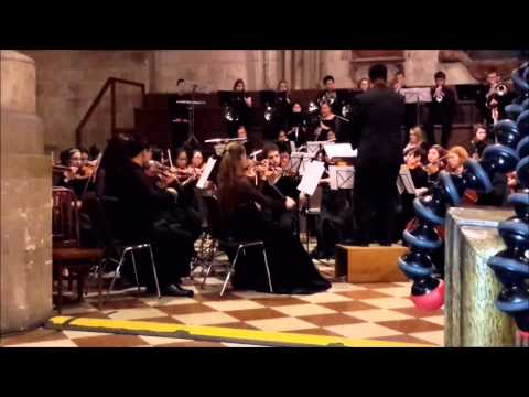 CHS Symphony orchestra - St. Stephen's Cathedral, Vienna, Austria