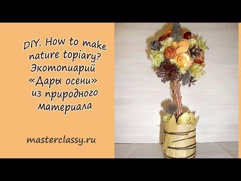 DIY. How to make nature topiary? Экотопиарий «Дары осени» из природного материала