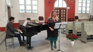 Darf des Falken Schwinge (Dvorak, Zigeunermelodien) by Dymphi Peeters & Freek Zwanenberg