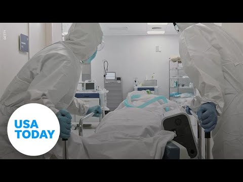 Sin Nombre hantavirus: What is the virus and how does one get infected? | USA TODAY