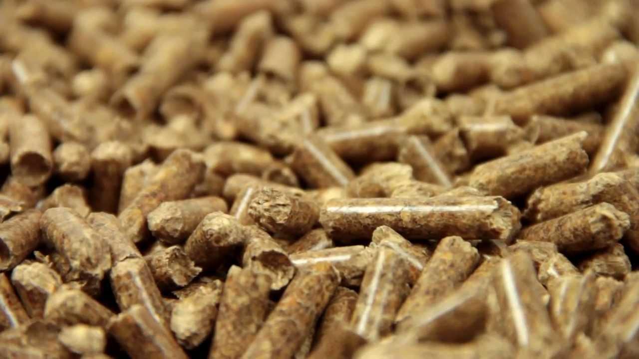 Venta de pellet burpellet fabricante de pellets en for Fabricantes de estufas de pellets