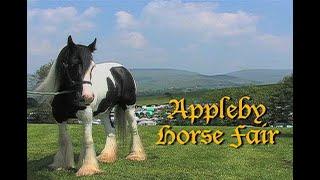 APPLEBY GYPSY HORSE FAIR